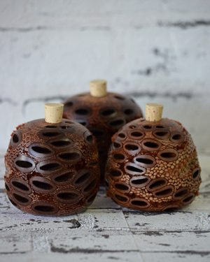 Scentsational Flowers - Gifts Banksia Aroma Pods